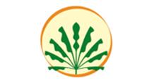 Logo CH Blondet